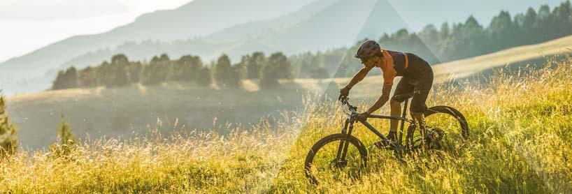 Mountainbike Onlineshop Angebote