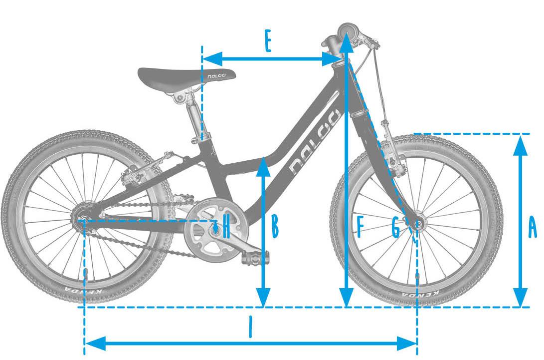 Naloo_Rahmengeometrie_Grafik_Chameleon_16_Zoll