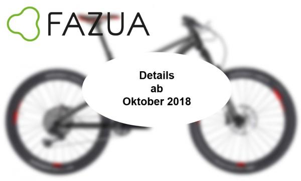 LAPIERRE E-Zesty AM LTD - Modell 2019 - FAZUA Antrieb